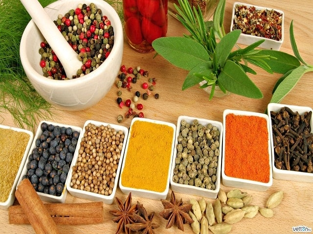 Colors and Ayurveda