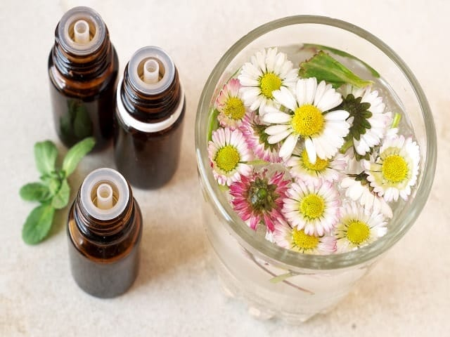 Single Herbal Tinctures