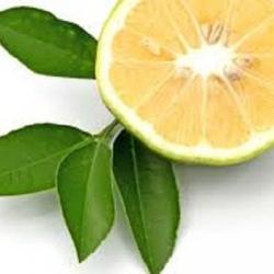 oils-bergamot
