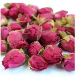 red_rose_buds