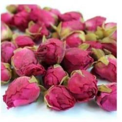 red_rose_buds