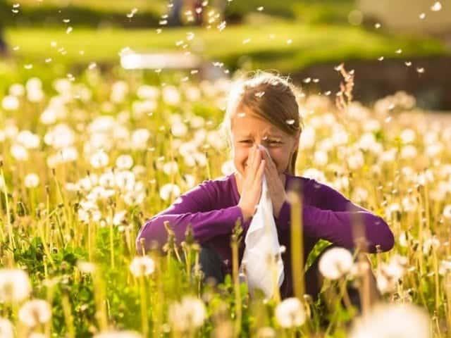 Allergy Elimination Diet