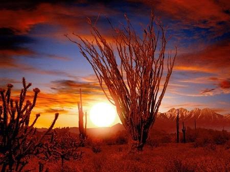 Soul Satisfying Journeys: Sensational Sunsets