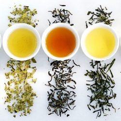 teas-specialty-group