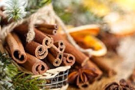Seasonal Herbs for Christmas
