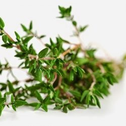 thyme-herb-oil