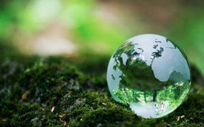Celebrating Earth Week: Reduce, Reuse, Re-love