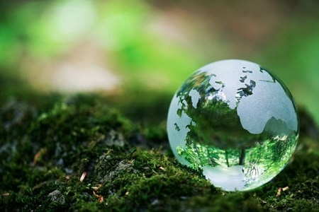 Celebrating Earth Week: Reduce, Reuse, Re-love