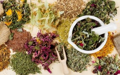 Herbs Used for Cleansing