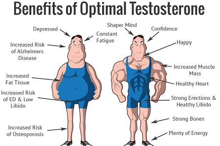 How To Boost Testosterone Levels