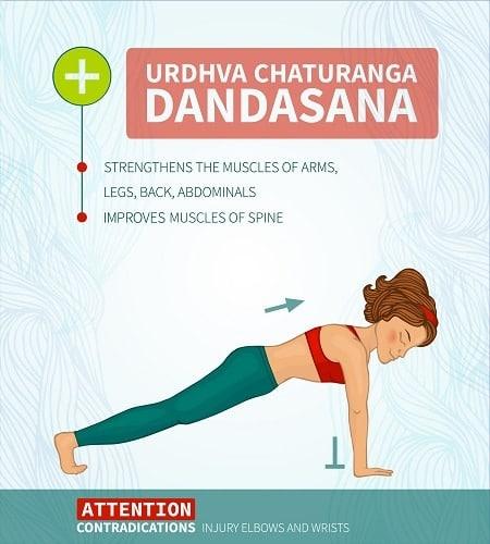 Urdhva Chaturanga Dandasana
