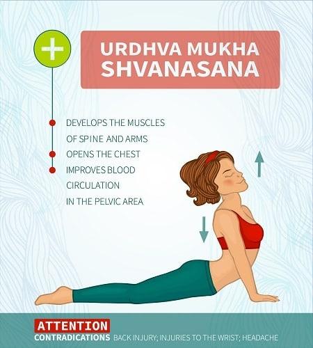 Urdhva Mukha Shvanasana 1