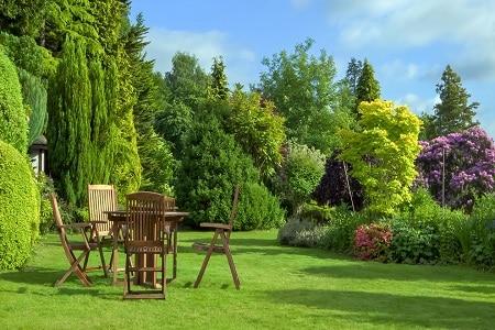 The Power of a Summer Garden