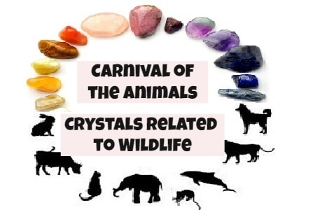 Carnival of the Animals: Crystals Named After Wildlife