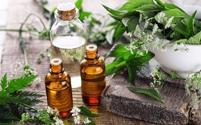 A Dose of Herbs, A Dash of Oil for Luck